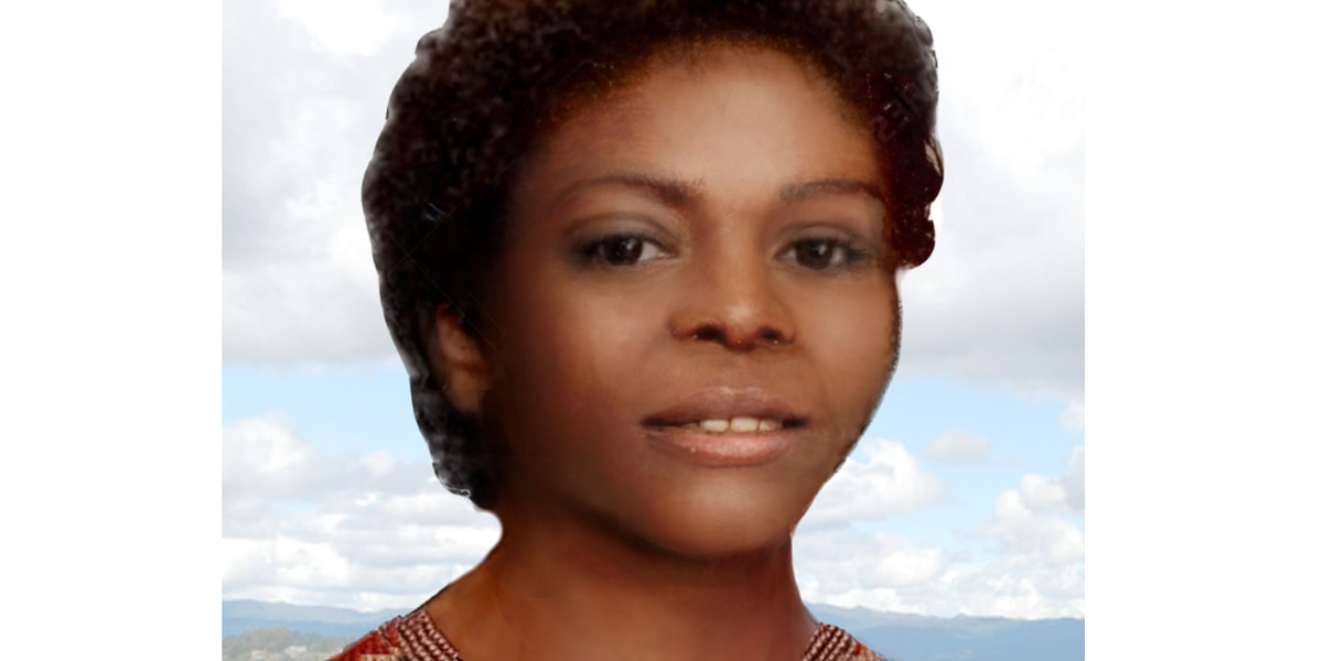 Who is she? A woman killed 43 years ago in Illinois may have an Alabama connection
