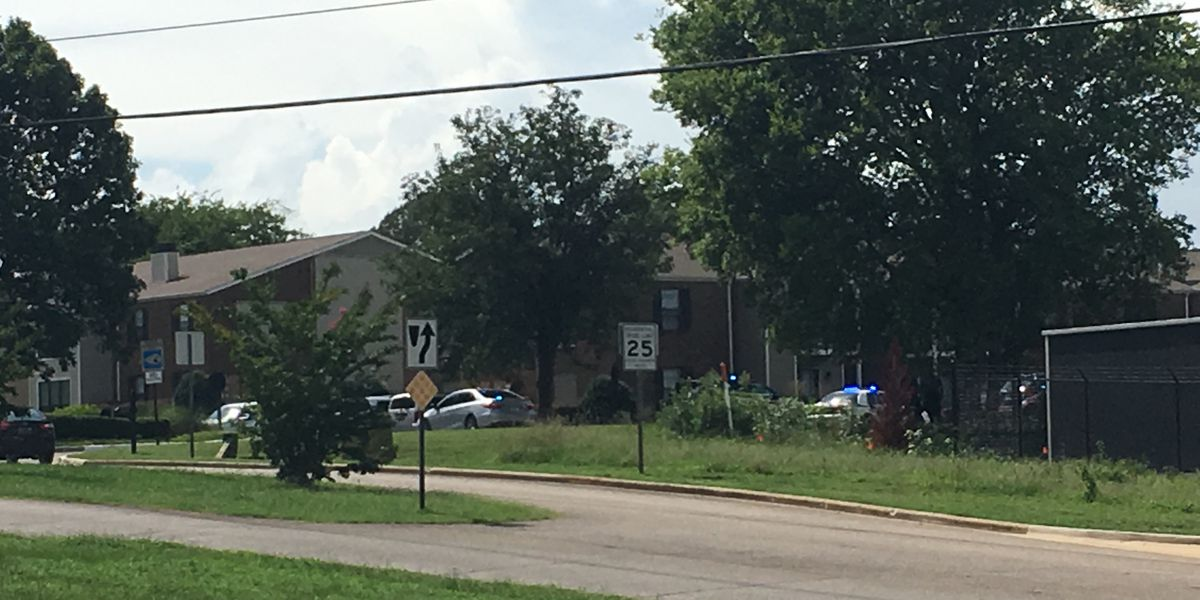 Suicide call leads to standoff at Madison apartment complex