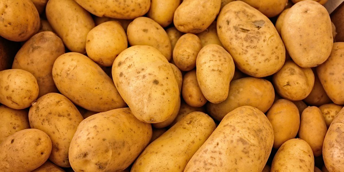 It's National Potato Day!