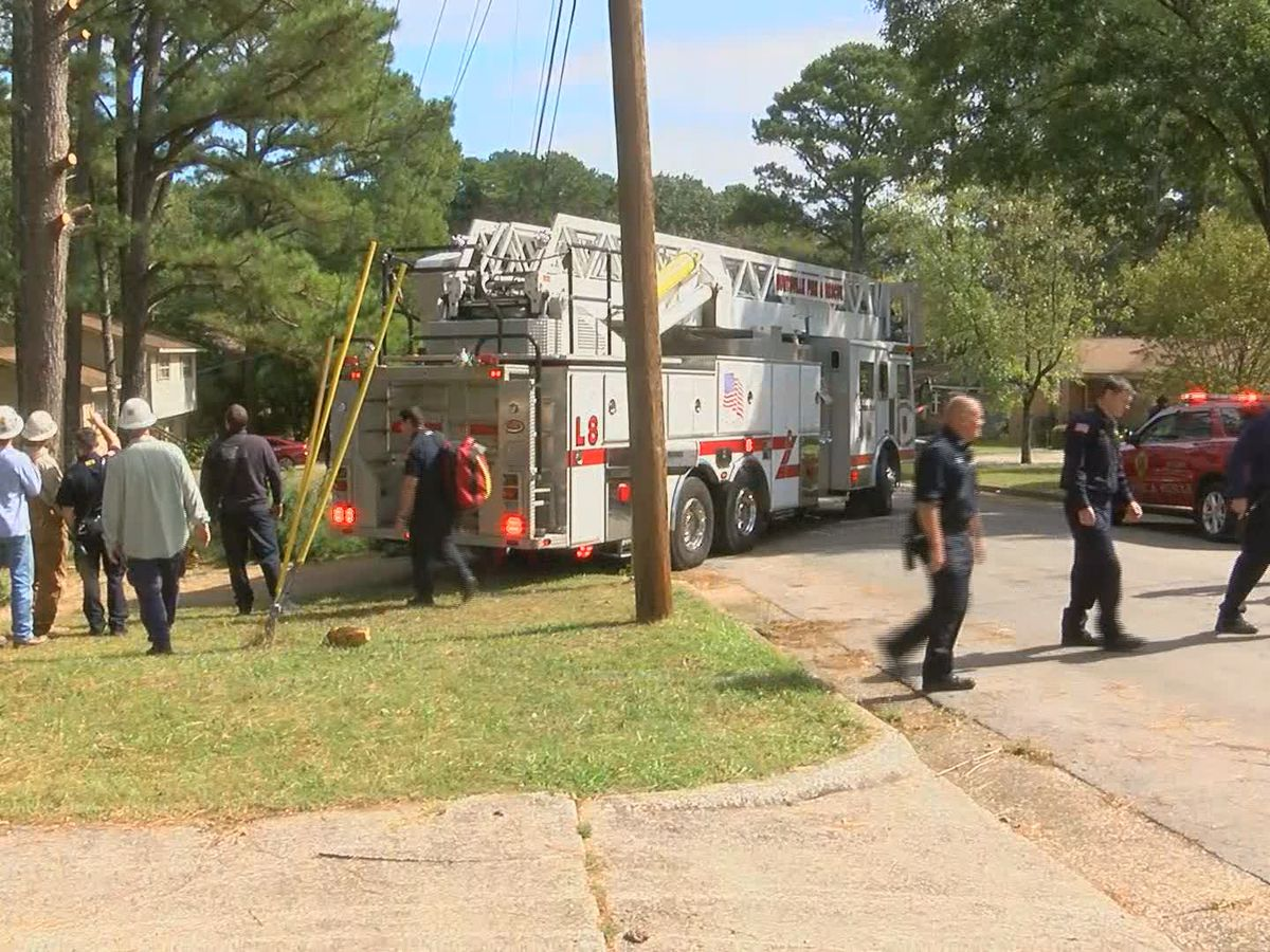 Huntsville firefighters rescue tree trimmer