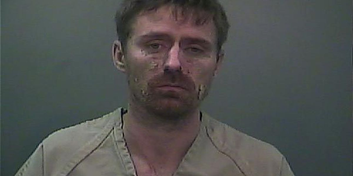 Fugitive captured in Limestone County after manhunt
