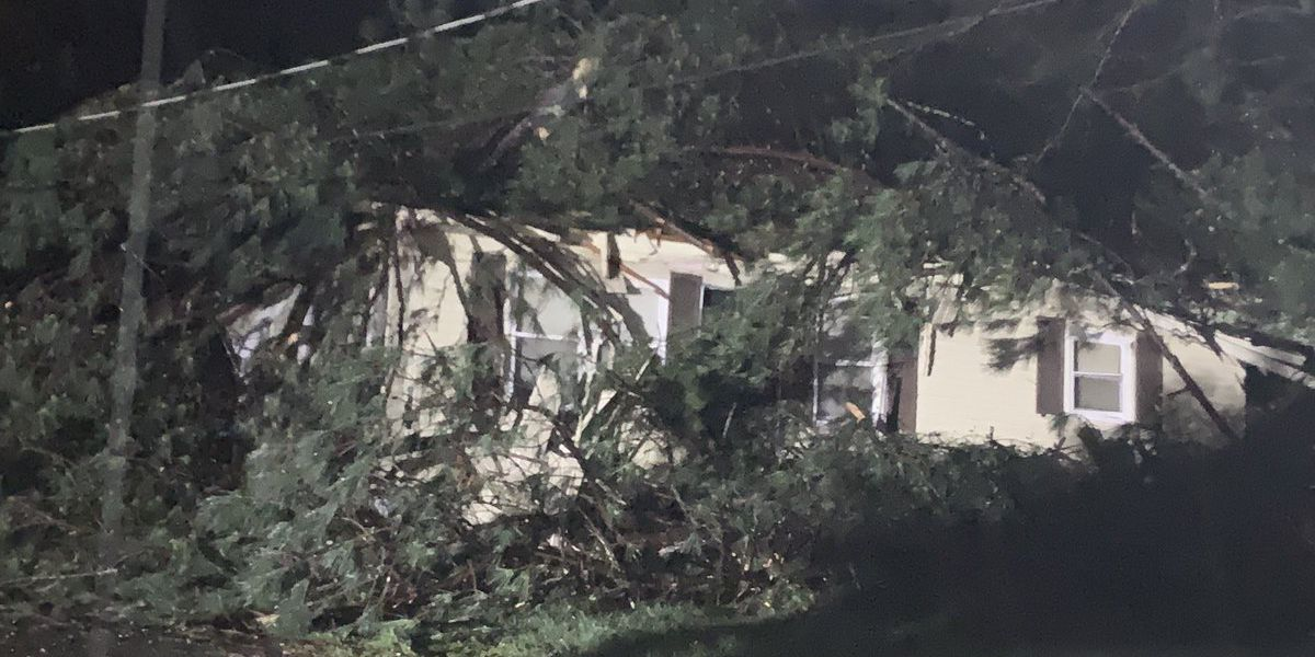 Mobile home park one of hardest hit areas in Blount Co. during severe weather