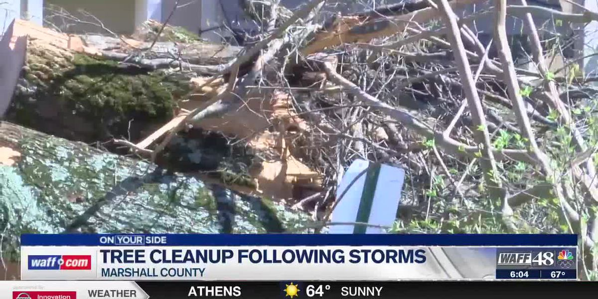 Cleanup continues to remove fallen trees outside of Marshall County Courthouse