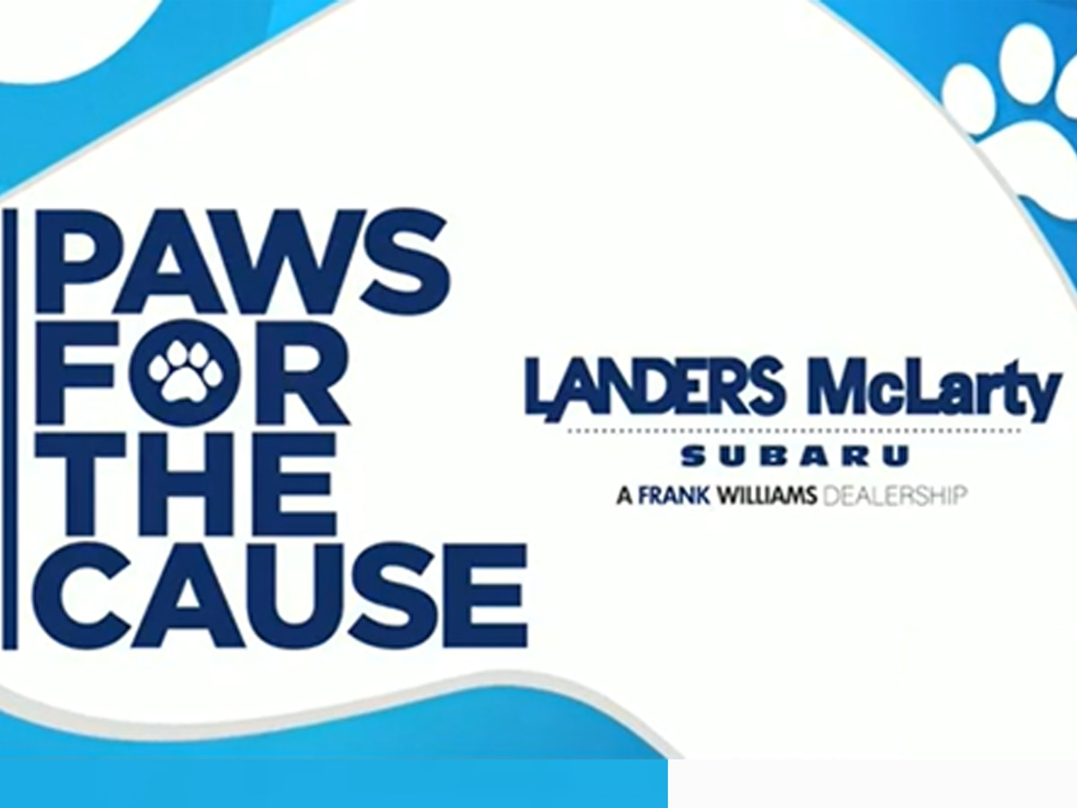 WAFF 48′s Paws for the Cause: tune in every Friday at 5 p.m.