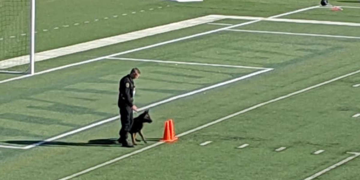 Huntsville Police Officer and his dog win at USPCA Dog Trials in Chattanooga