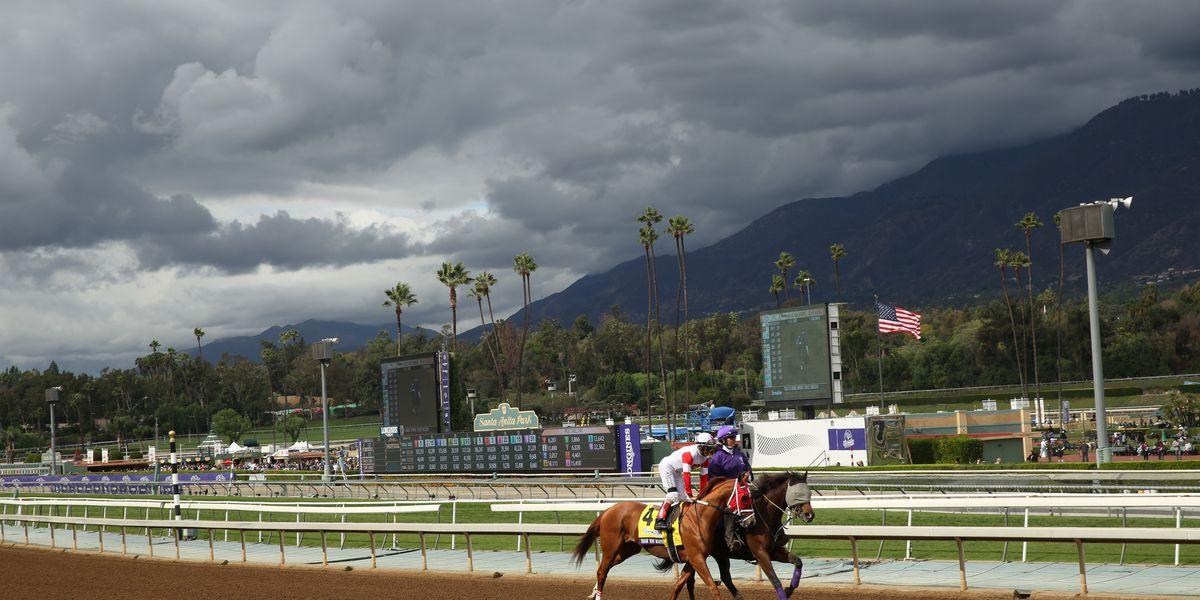 Another horse dies at Santa Anita Park, 24th since December