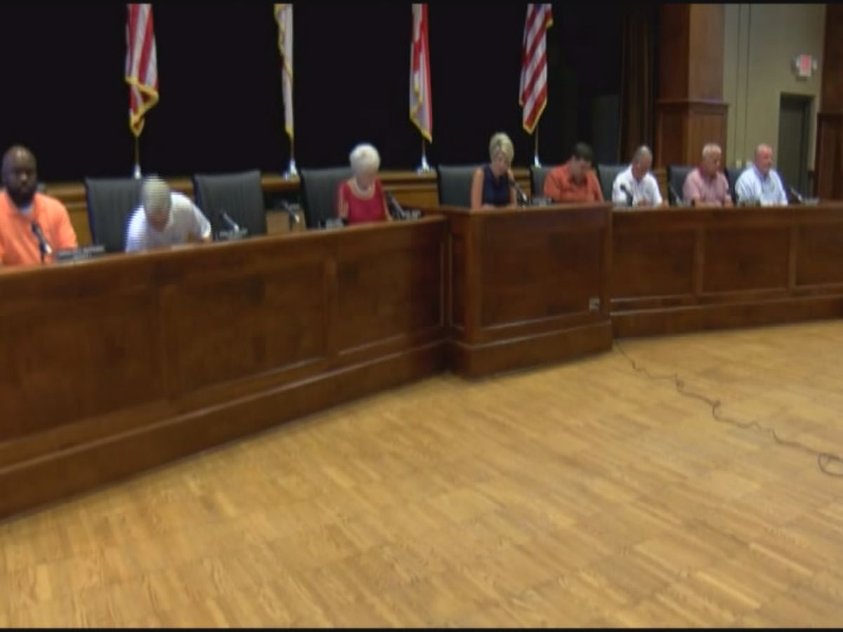 Guntersville council seeks to increase sales tax while group of residents seek to raise it even more