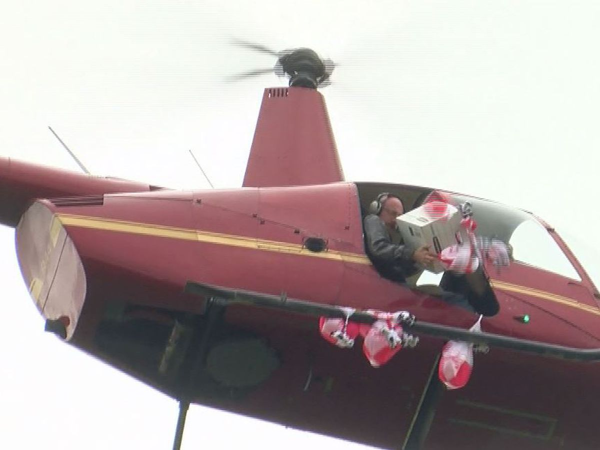 Plush cows dropped from helicopter in Madison in hopes of breaking record