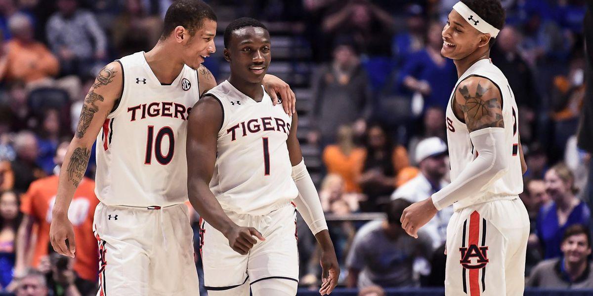 Auburn guard declares for NBA draft