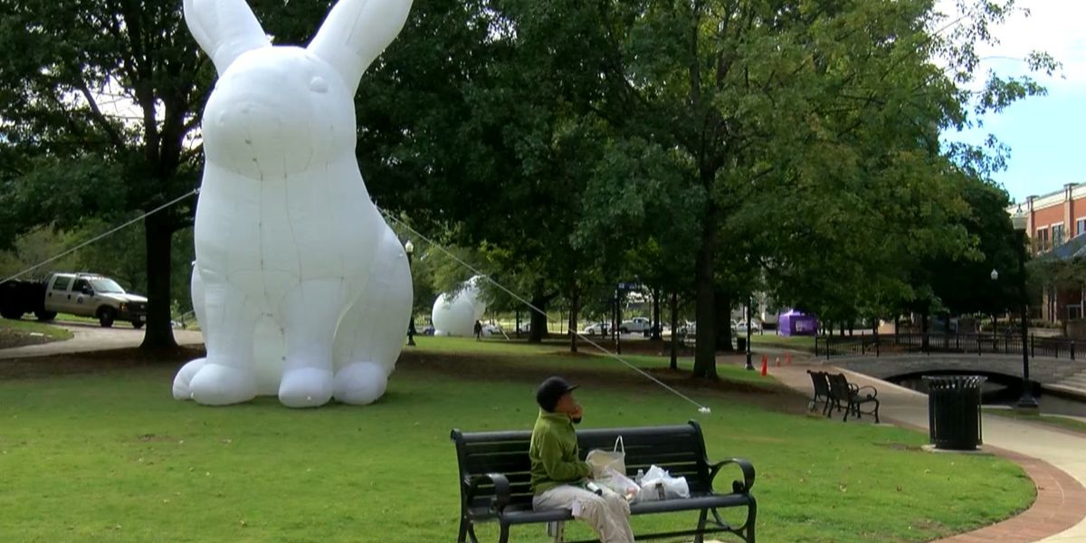 Bunnies 'Intrude' Huntsville's Big Spring Park