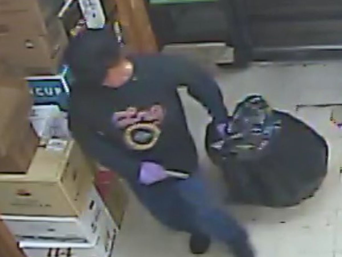 Madison police searching for burglary suspect