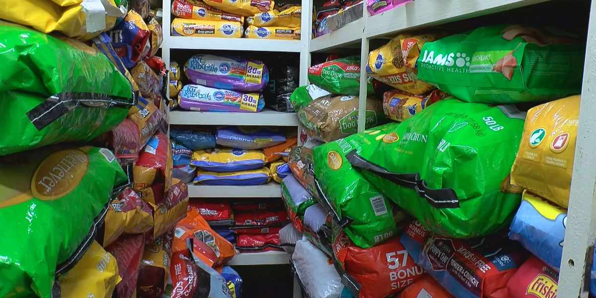 Donations pouring in to Colbert County Animal Shelter