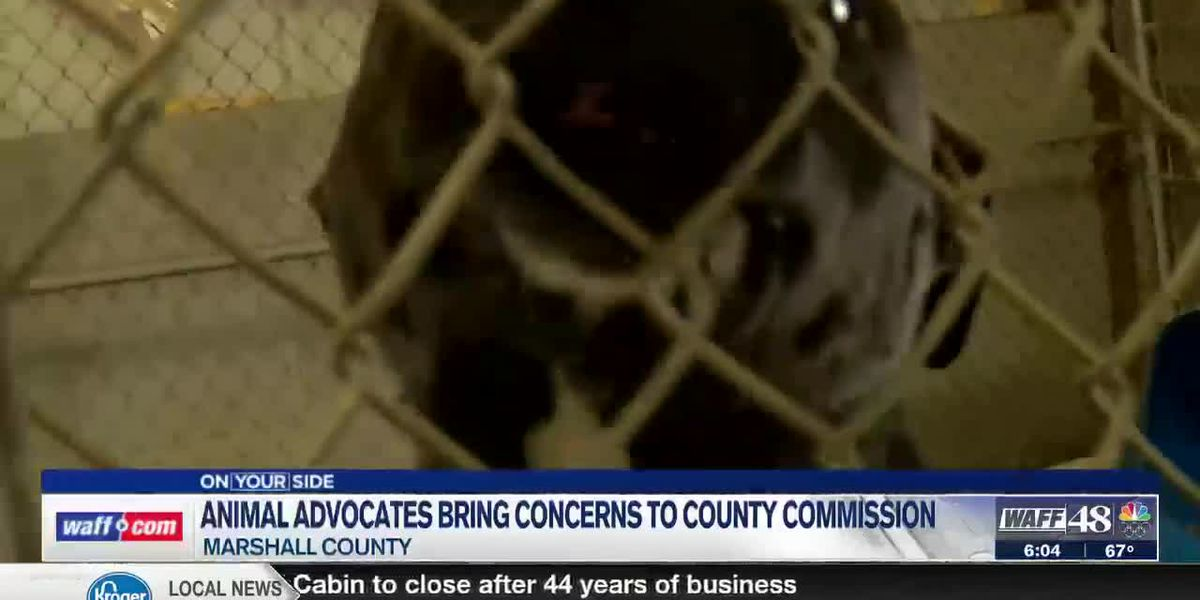 Animal advocates bring concerns to county commissions