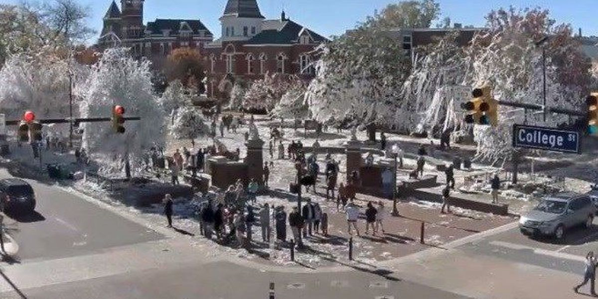 Toomer's Corner cleanup underway, Auburn fans hope to do it all over again