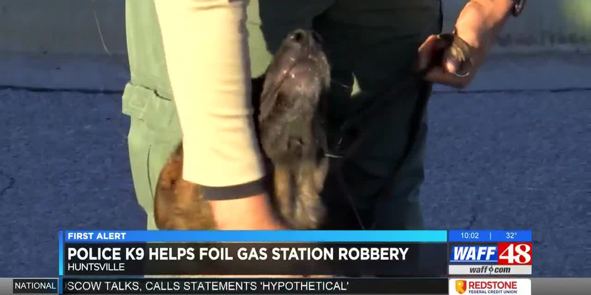 HPD K-9 helps foil gas station robbery