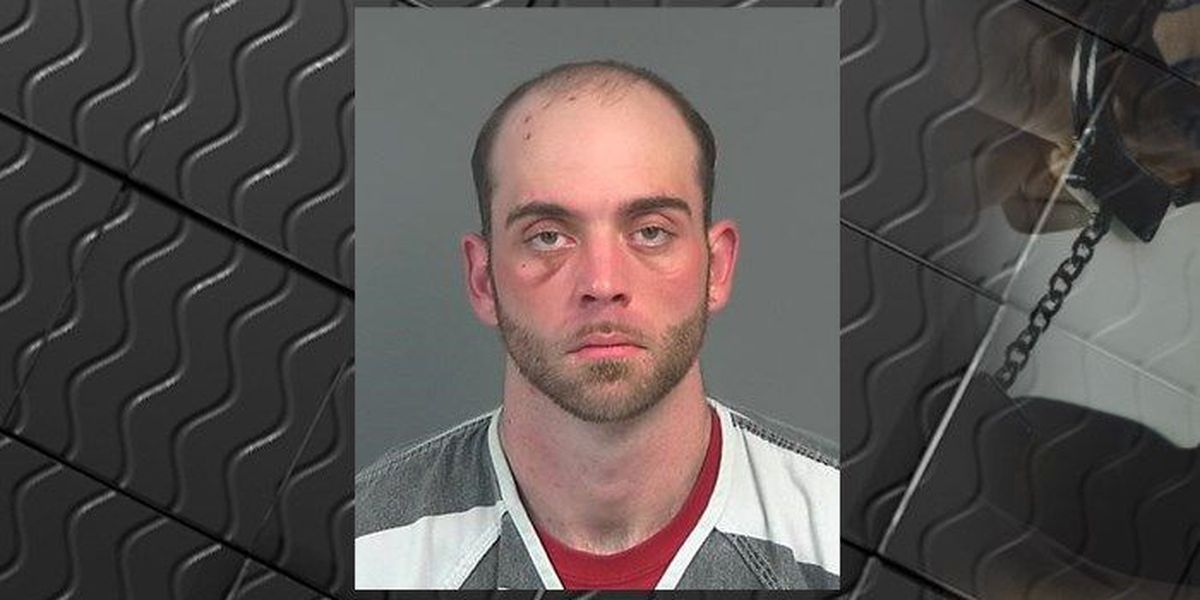 Police: Man steals vehicle from Albertville convenience store, crashes, flees scene