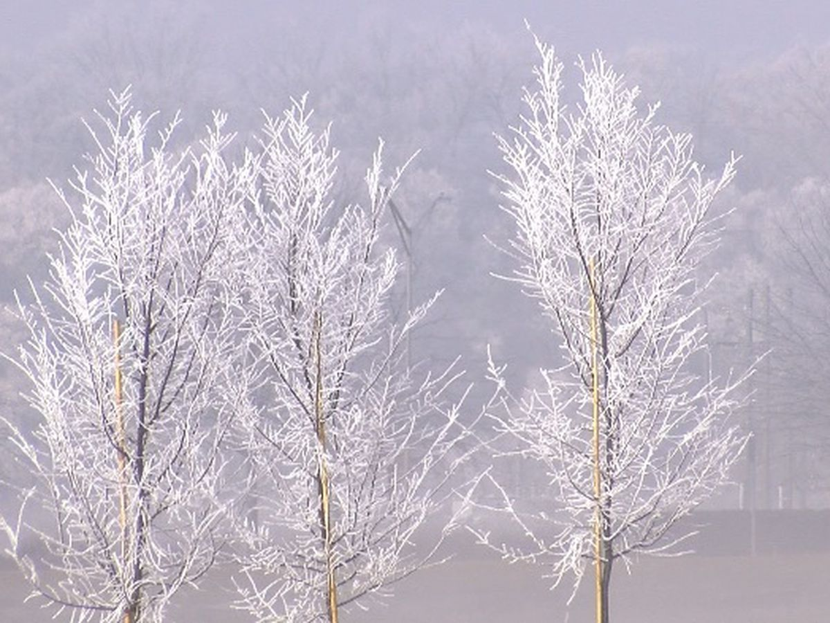 Weather experts explain freezing fog