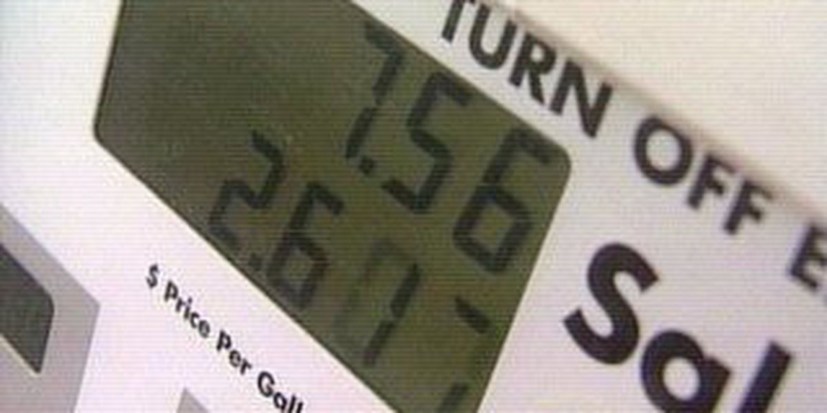 Patrolling the pumps: Are you getting the gallon you're paying for?