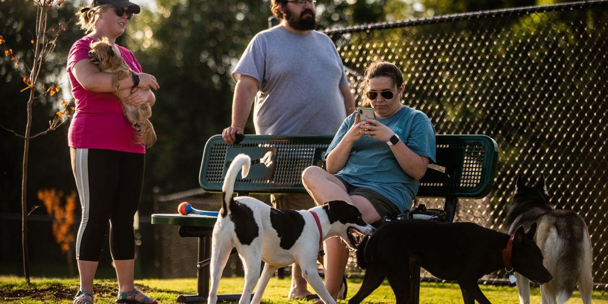 New dog park popular for pets and their owners in Decatur