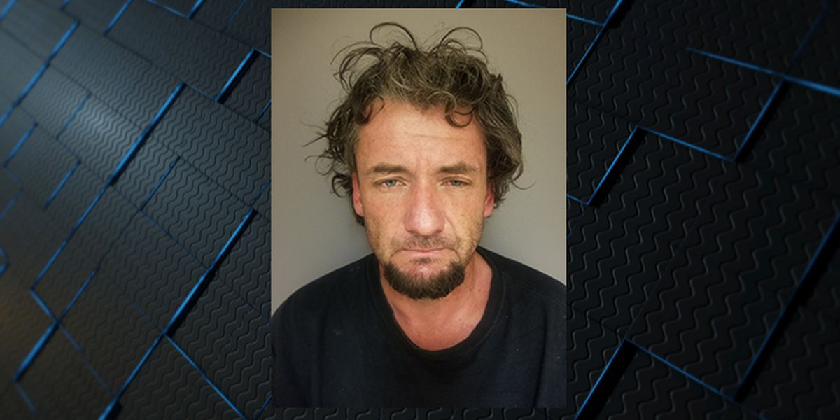 Driver charged with attempted murder for hitting motorcycle officer in Decatur
