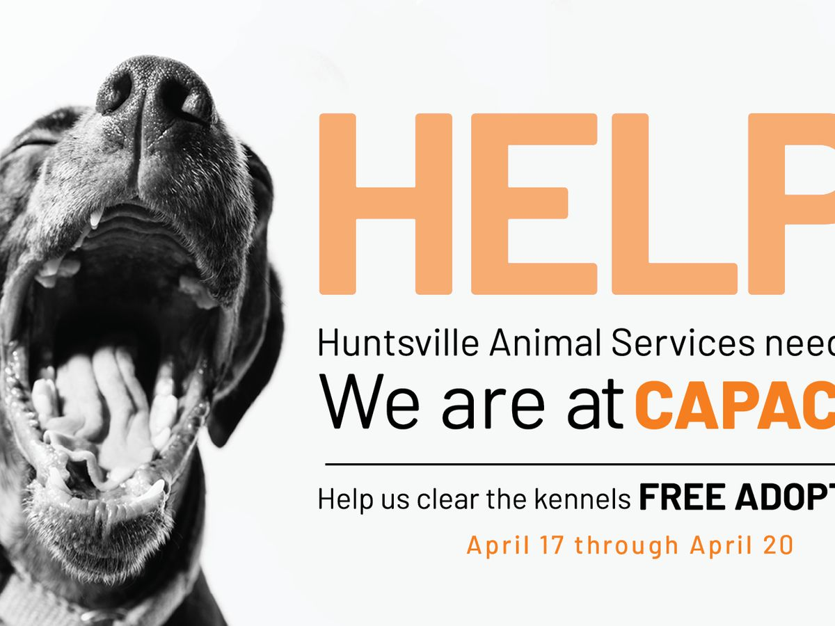 Free adoptions at Huntsville Animal Services through Saturday