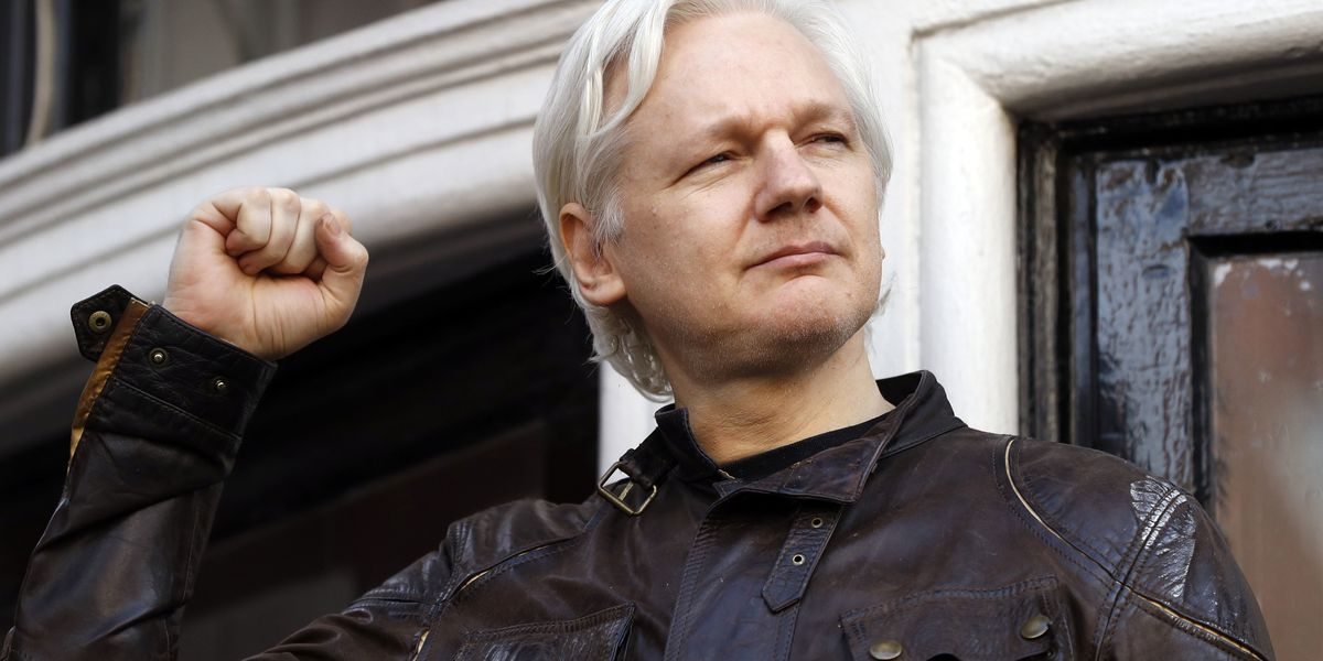 Report: Ecuador tells Assange to curb speech, look after cat