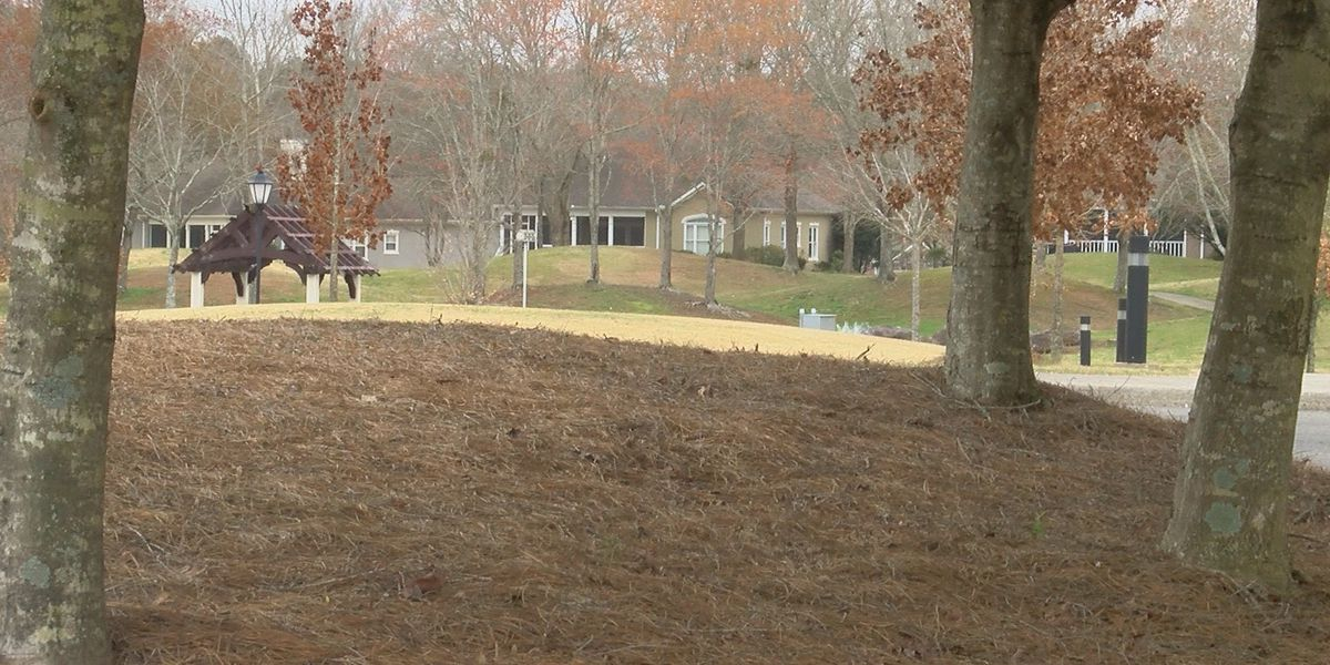Cherokee Ridge residents want neighborhood to be a town in Marshall County