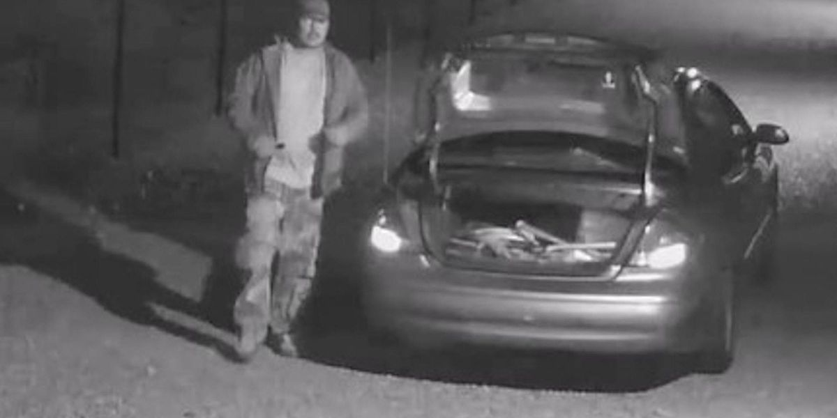 Suspects sought in multiple burglaries at Limestone County mini-storage