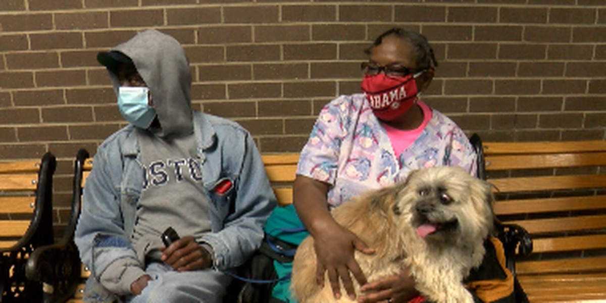 Families take shelter at Decatur City Hall; dogs & cats allowed on leashes or in carriers