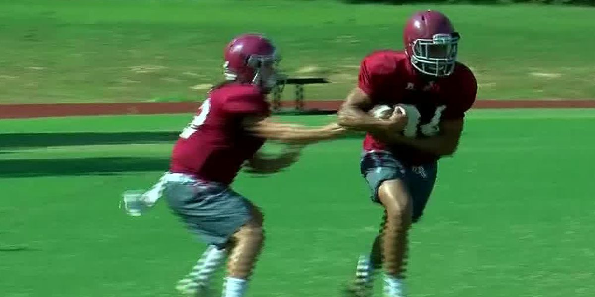 Hartselle Tigers season preview