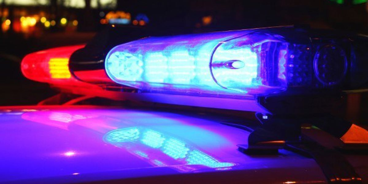Woman injured in hit-and-run in North Courtland