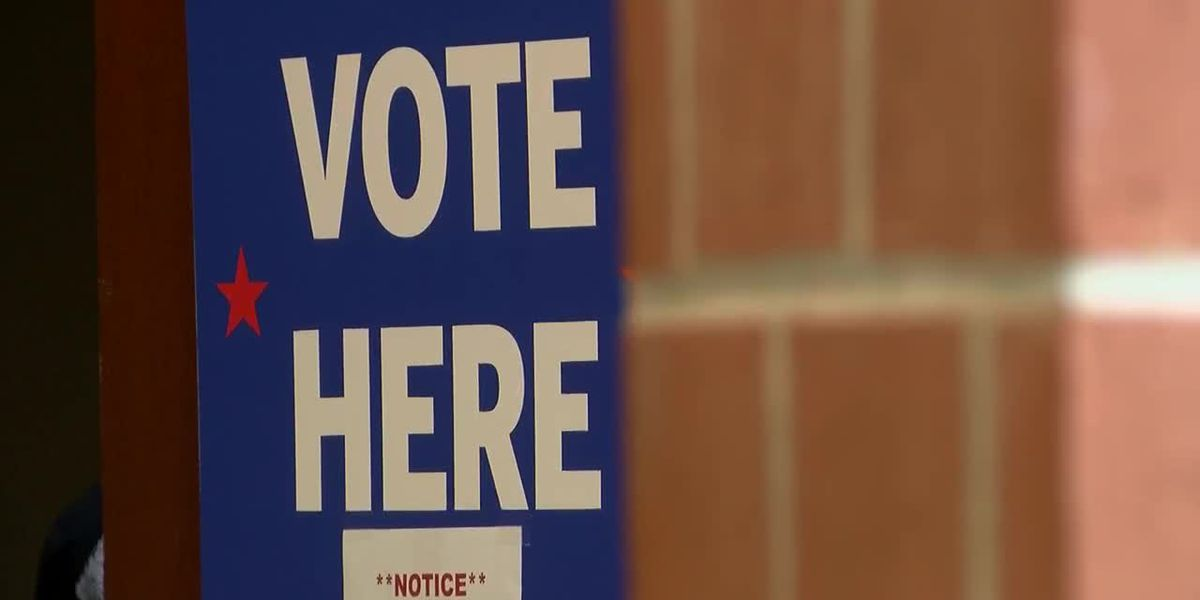 High school students step up and work the polls this election season