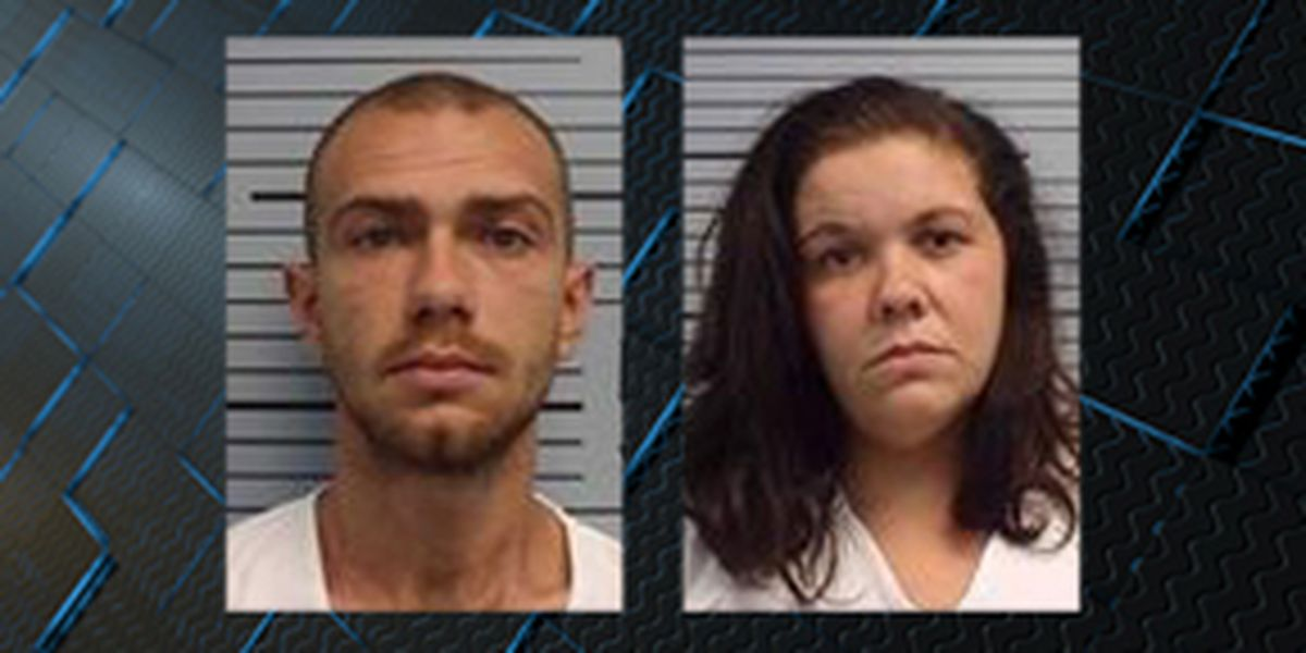 Jackson County couple plead guilty to starving dogs