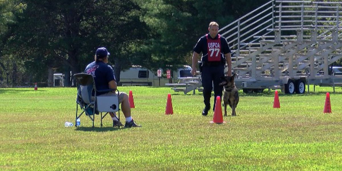 'Best-of-the-best' K-9 teams from across U.S. test skills in the Rocket City
