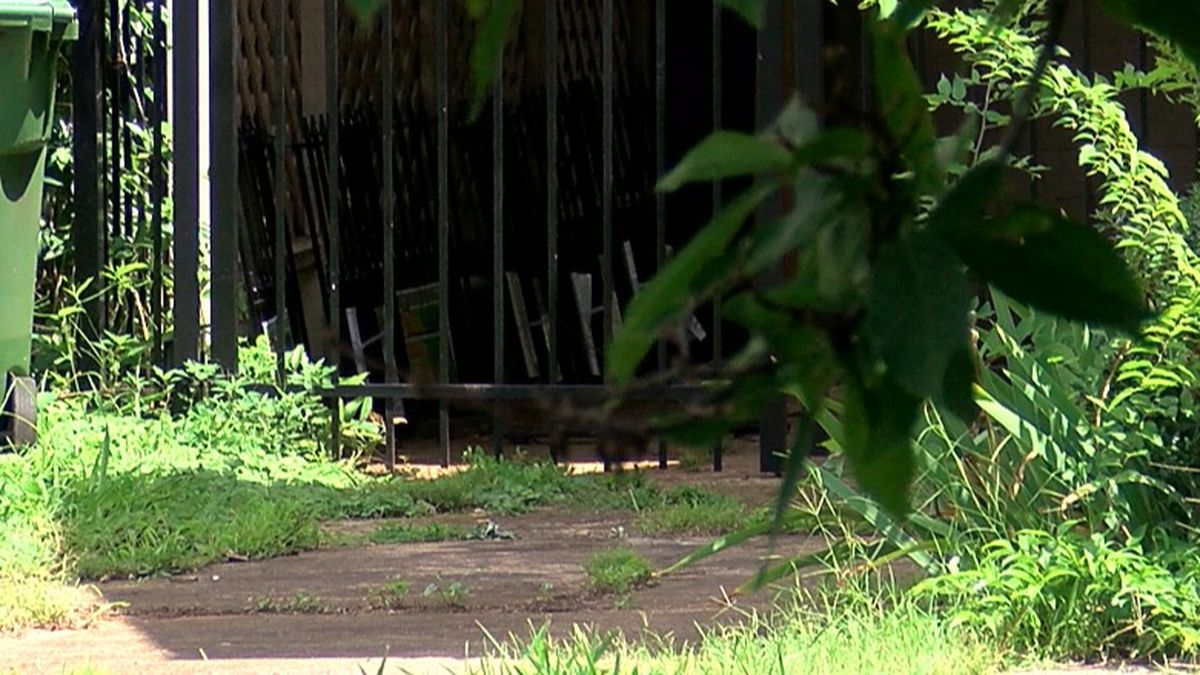 Huntsville Animal Services takes action against pit bull owner in Blossomwood