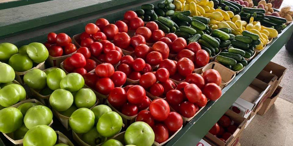 Athens Saturday Market begins this weekend
