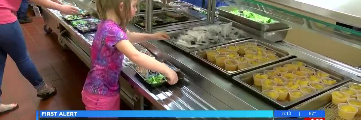 Huntsville City Schools offering free meals this summer