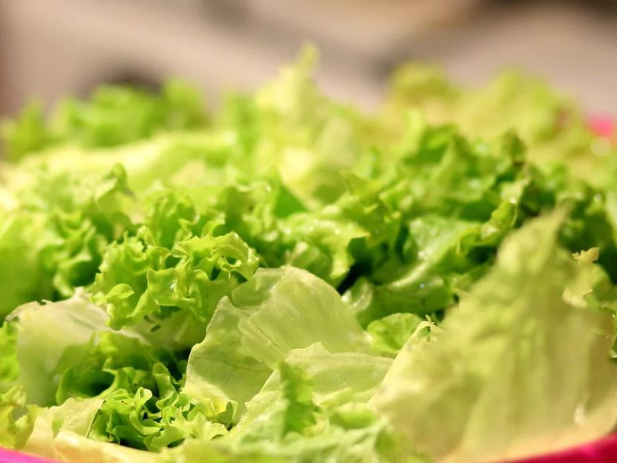More than 97K pounds of salad products recalled over possible E. coli contamination