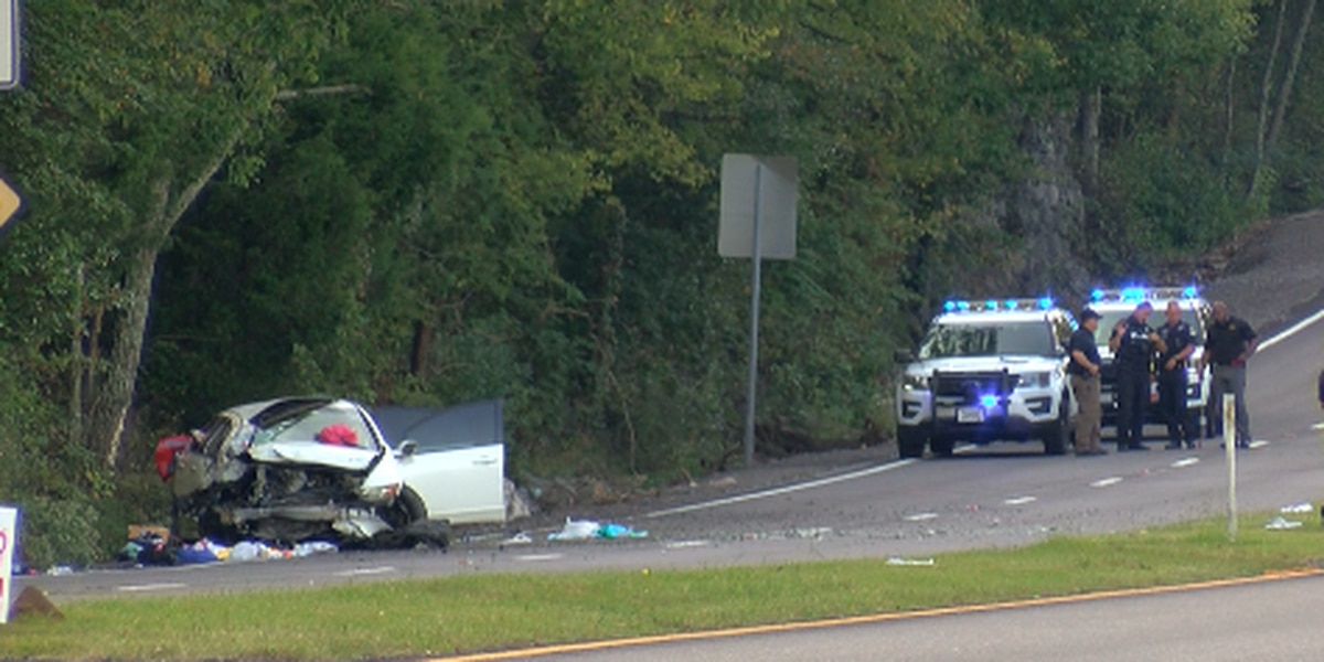 Two children critically injured in wreck on Highway 431
