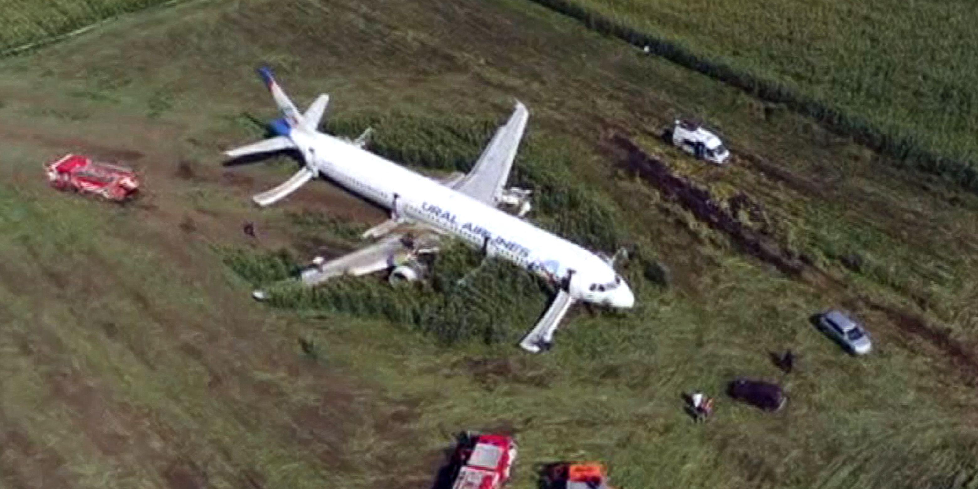 Pilot hailed as hero after bird strike disables Russian jet