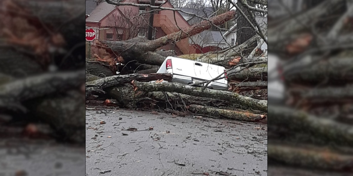 PHOTOS: Flooding and storm damage across the Tennessee Valley