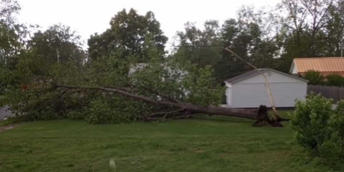 Power outages spread across northwest Alabama