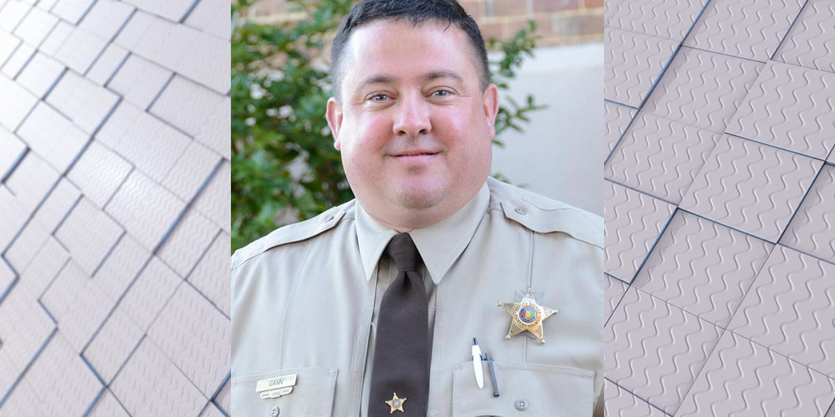 Alabama chief deputy arrested on theft charges