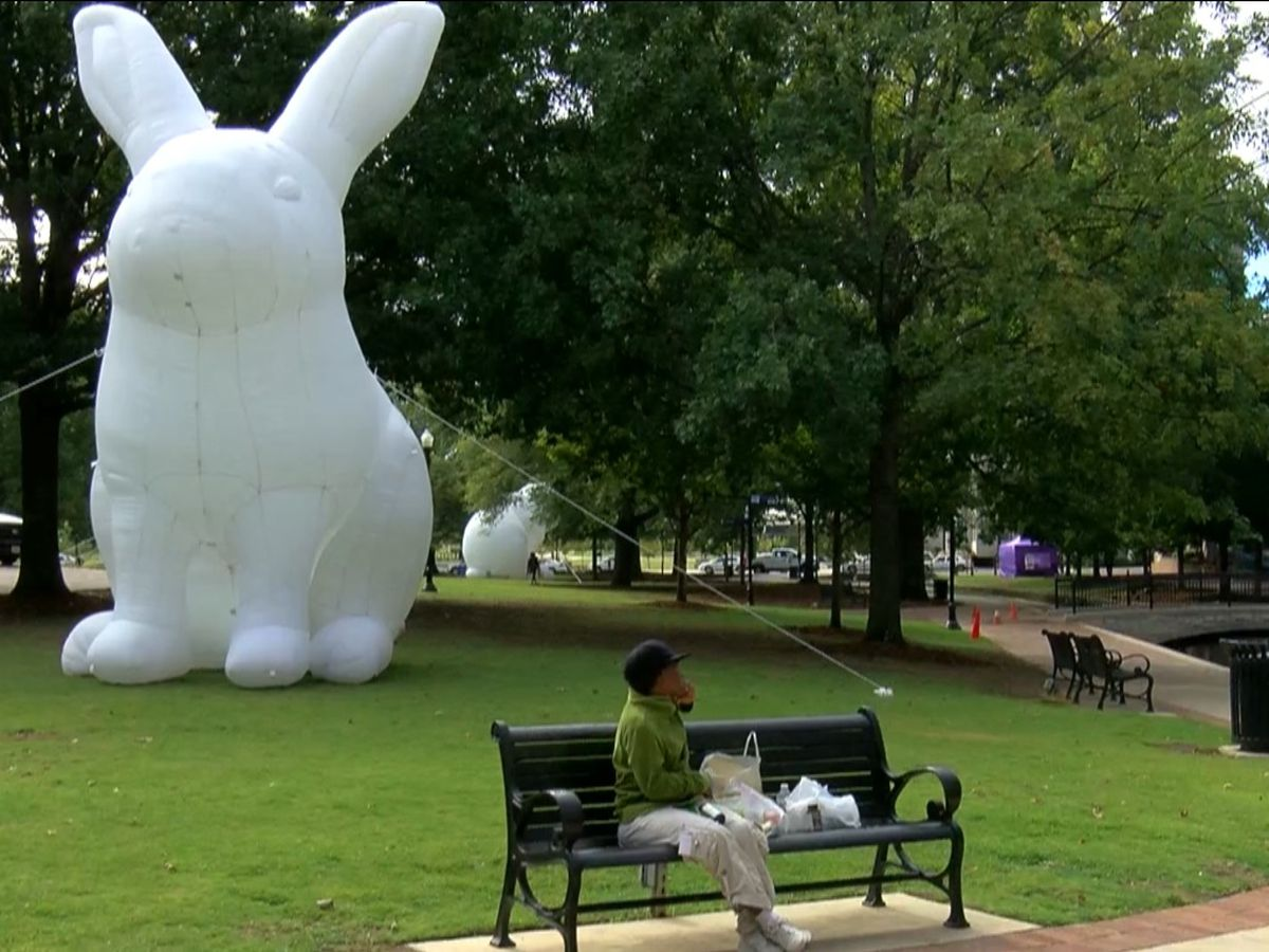 Bunnies 'Intrude' Huntsville's Big Spring Park