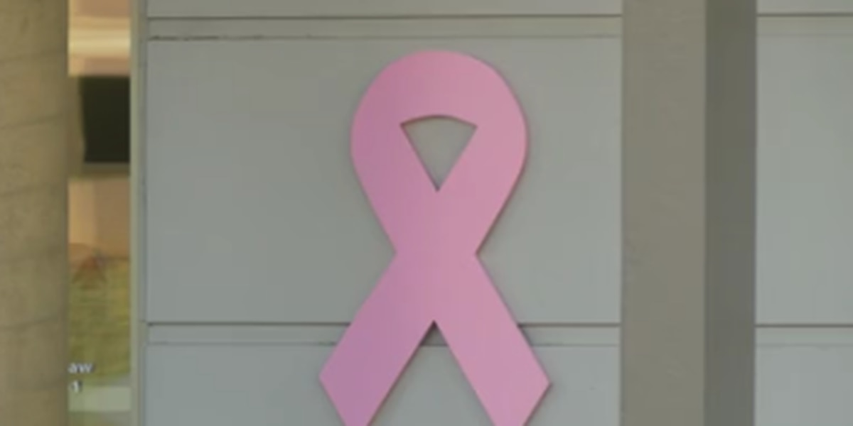 Joy to Life Foundation to take breast cancer screenings statewide