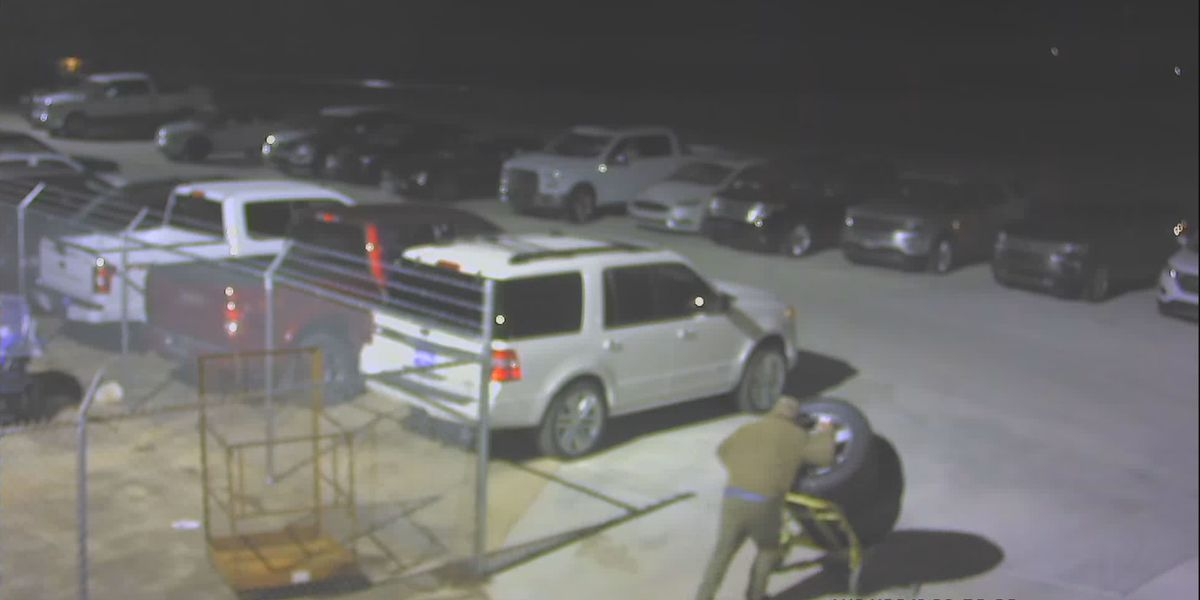 Crime Stoppers: Tire thief cuts through Huntsville car dealership's fence