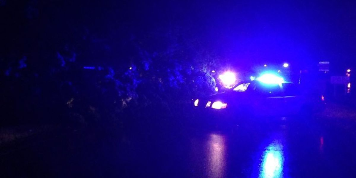 Strong storms overnight topple trees and trigger power outages