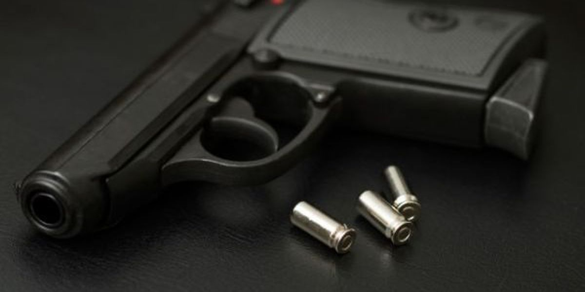 2 men killed in Decatur shootings within 24-hour period
