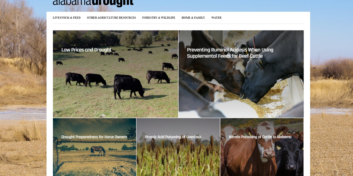 Alabama Extension Office launches drought website