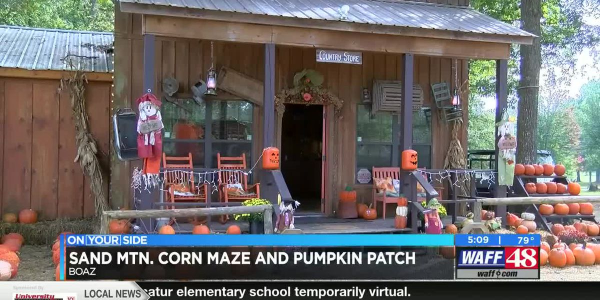 Sand Mountain Corn Maze and Pumpkin Patch add additional safety measures for guests